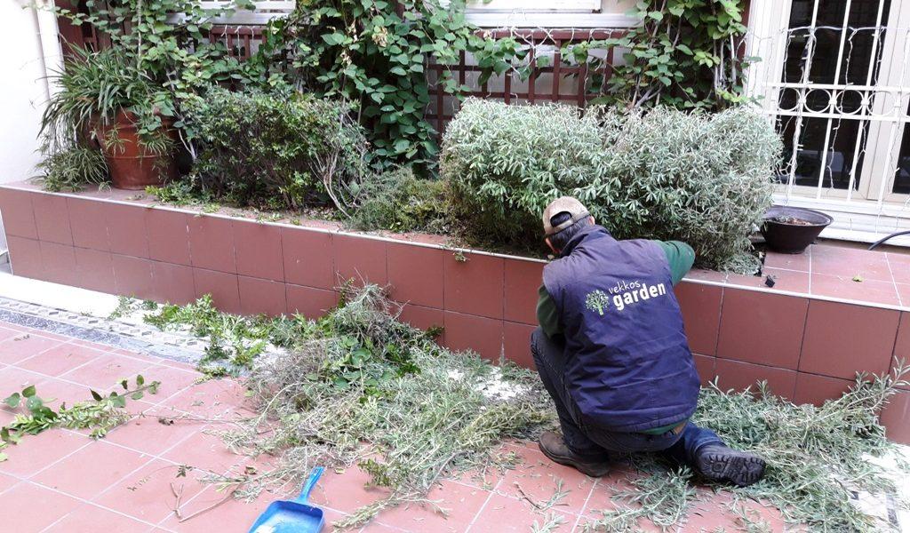 Εργασίες στον κήπο τον Δεκέμβριο.