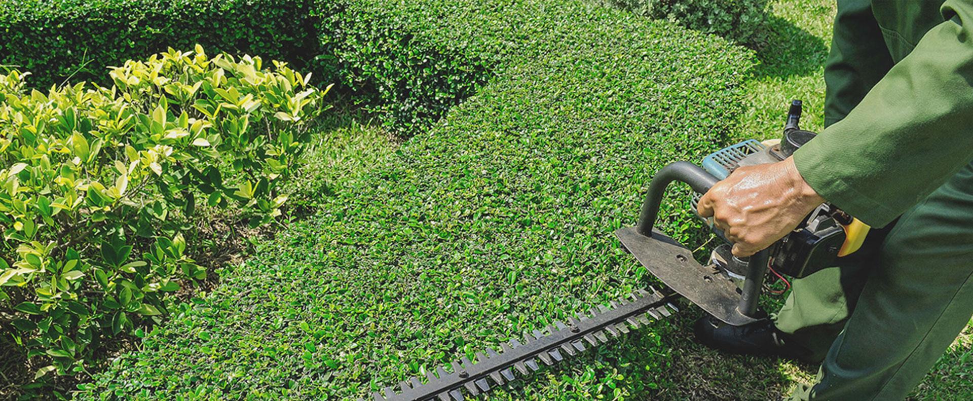 vekkos garden